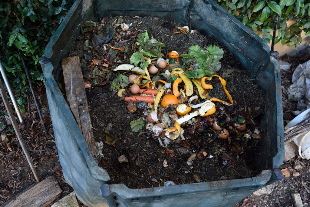 Used coffee grounds on the compost bin